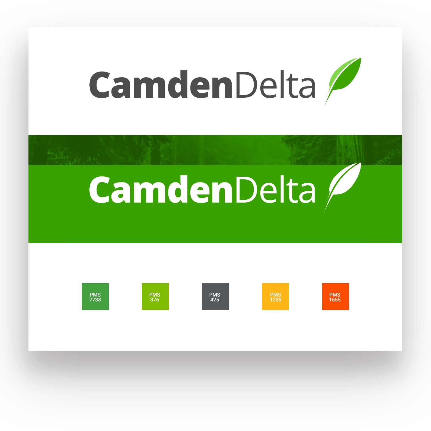 Camden Delta Branding and Colors